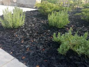 Rubber Mulch in Garden