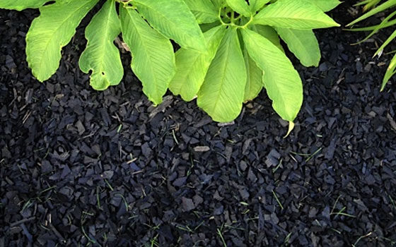 Recycled Rubber Mulch Nuggets
