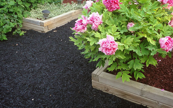 Recycled Rubber Mulch for Pathways